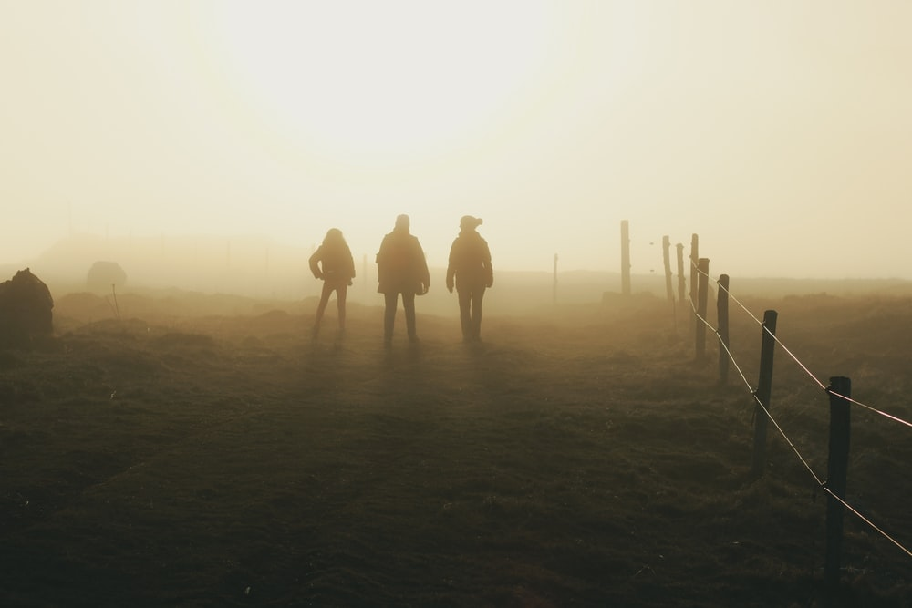 three silhouette of person walking