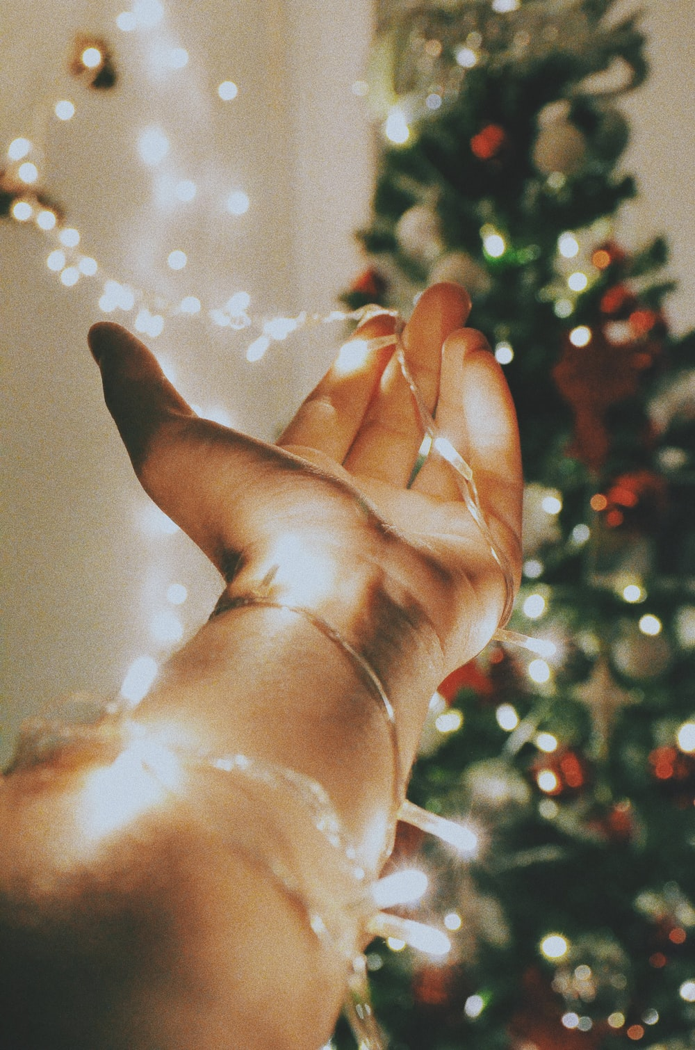 person holding stripe light near the Christmas tree