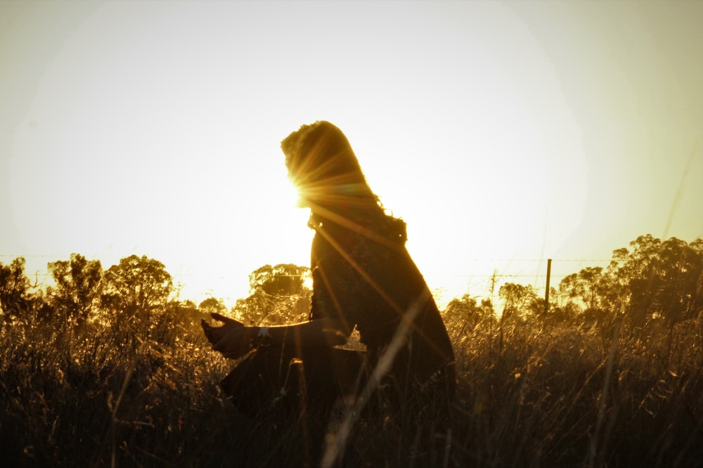 silhouette of person sitting on grass