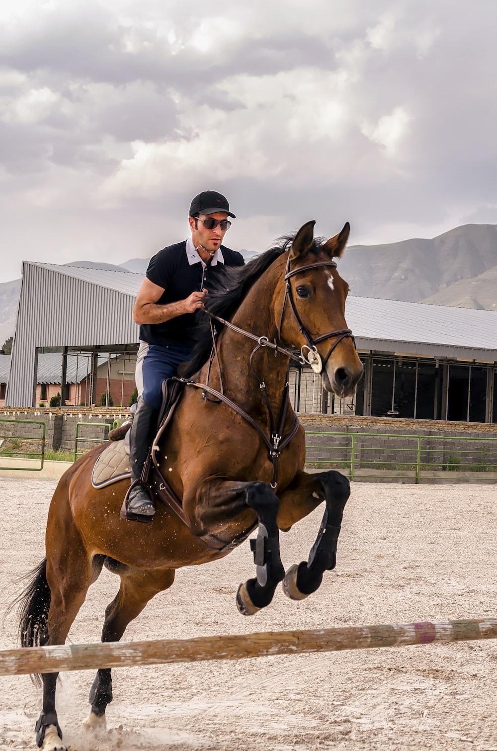 man wearing black cap riding brown horse