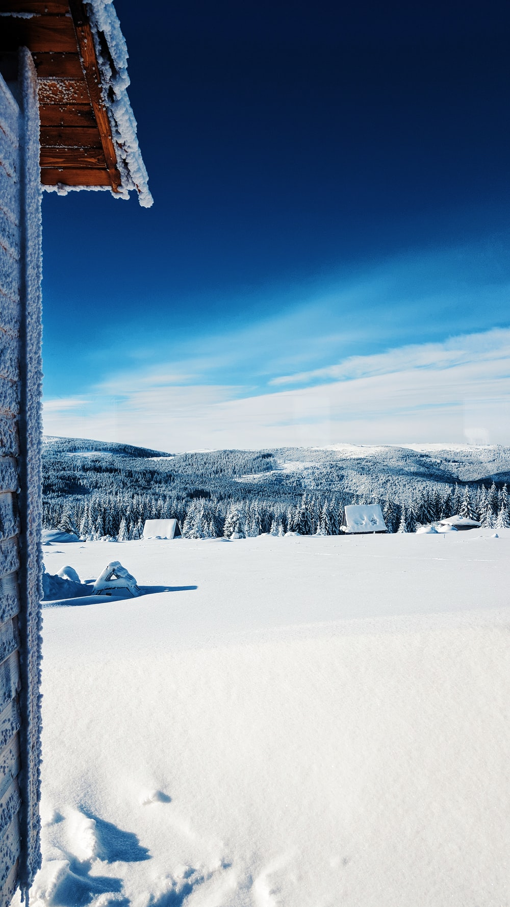 white snow field