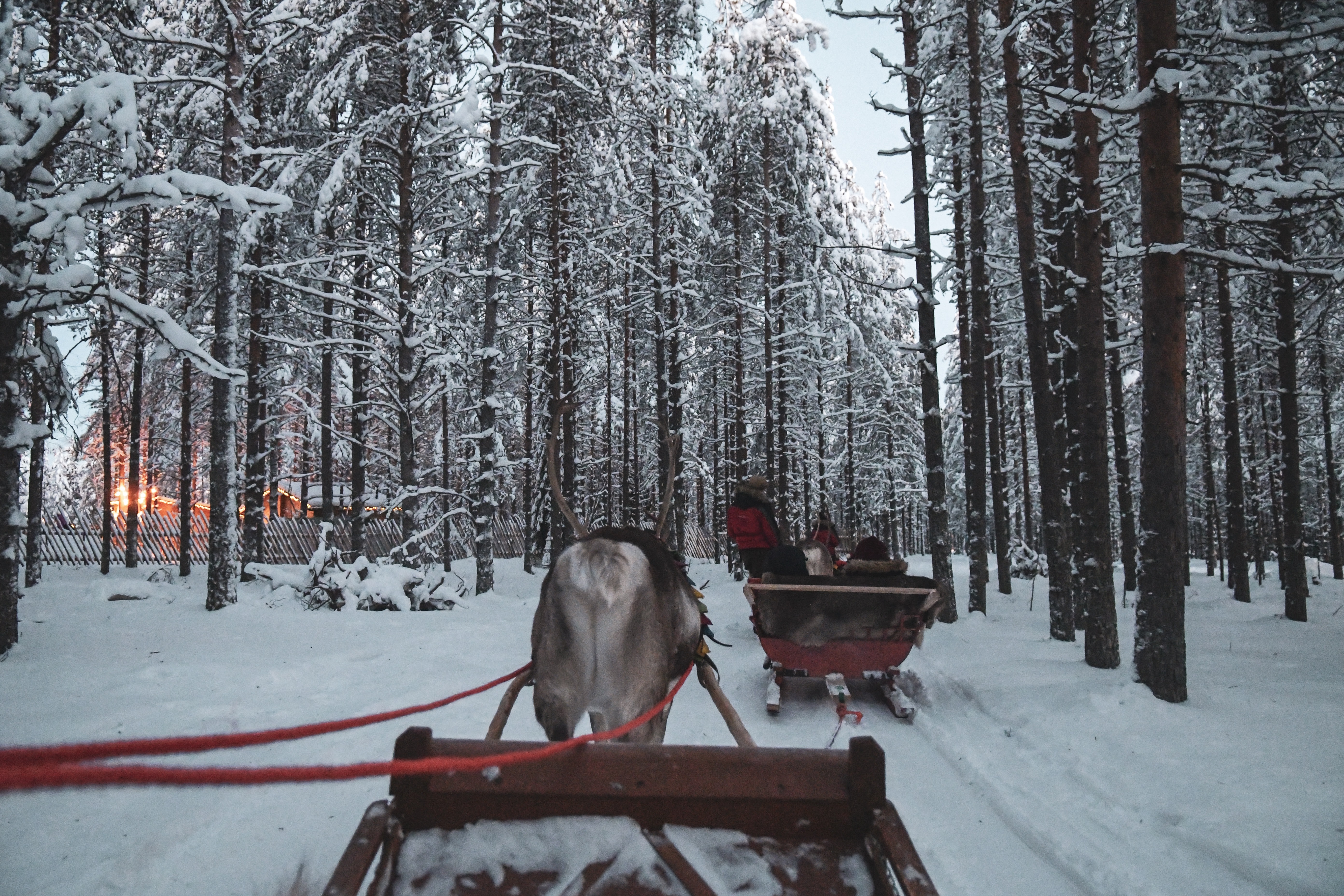 two sleighs on snowy road