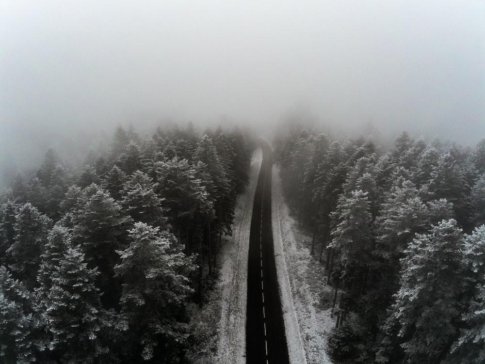 grayscale photo of empty roadway