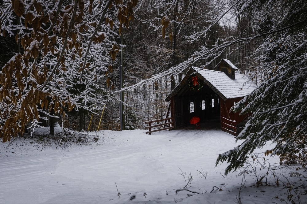shed covered by snow
