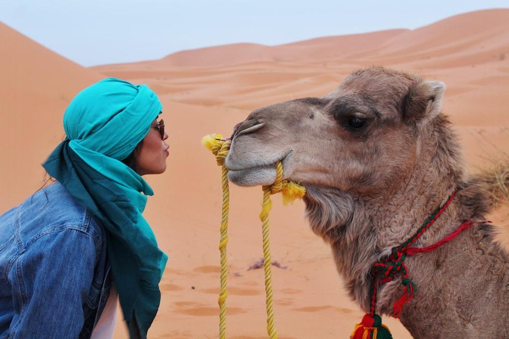 woman wearing blue jacket facing brown camel