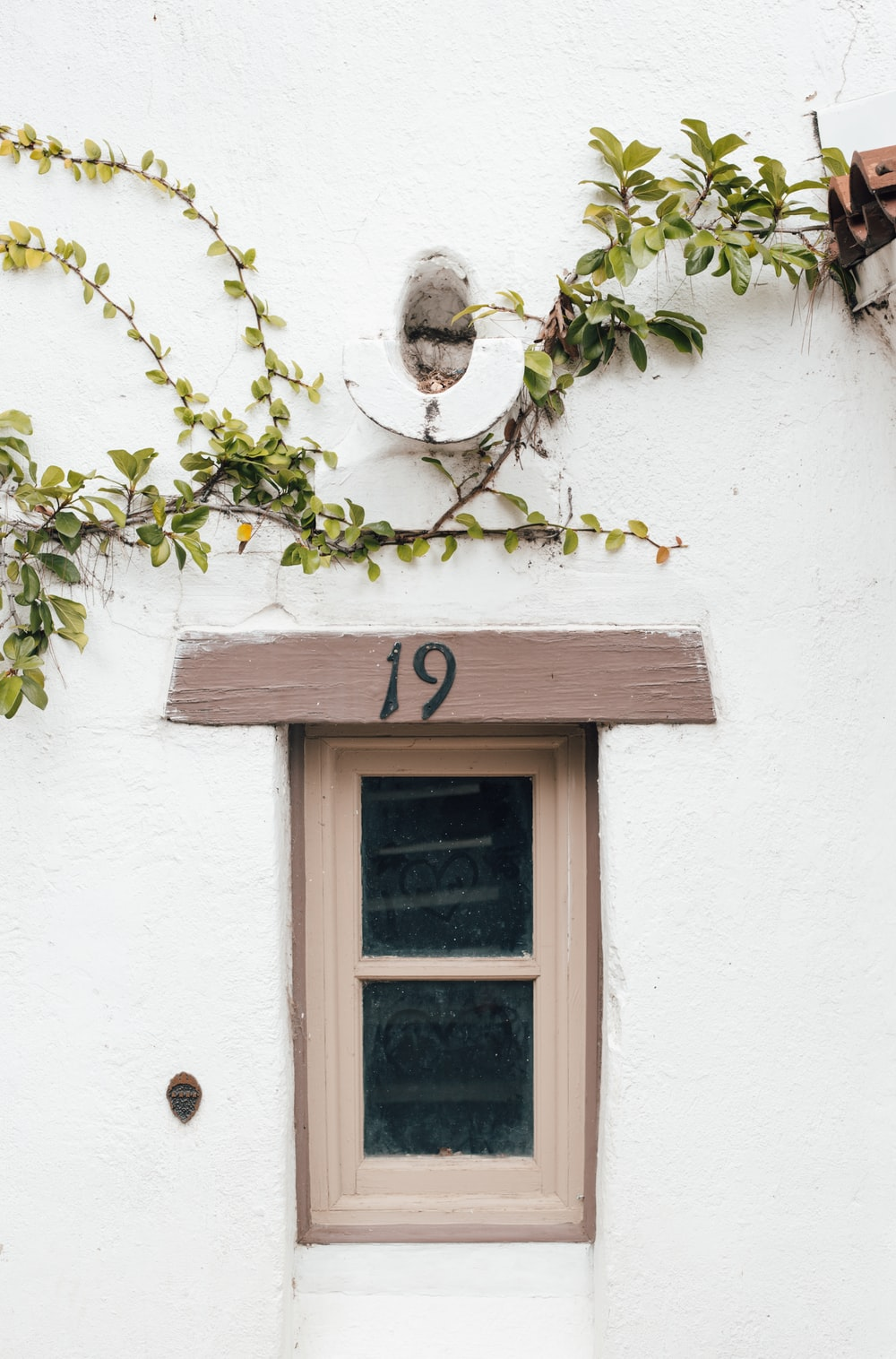 brown window frame