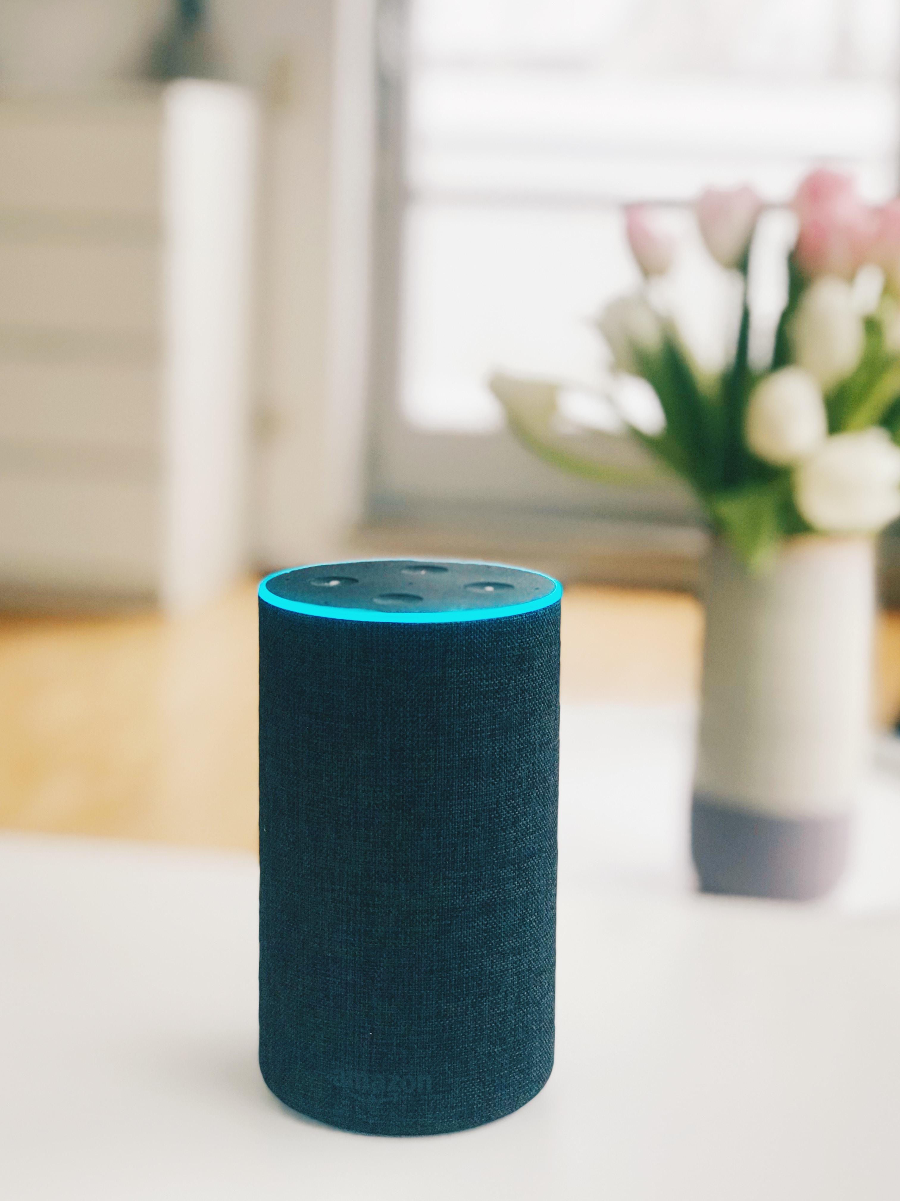 black and teal portable speaker