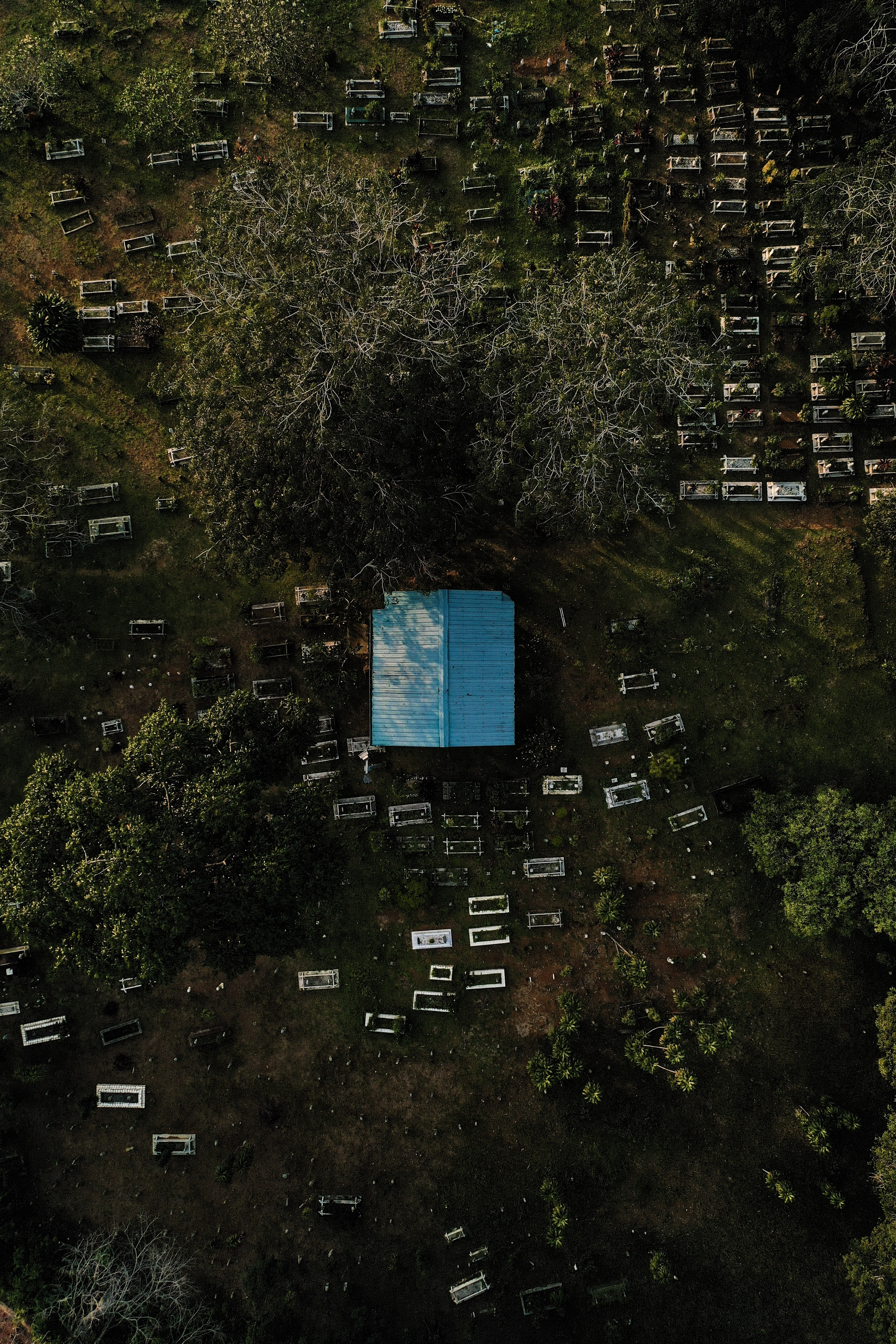 aerial view of blue house and trees