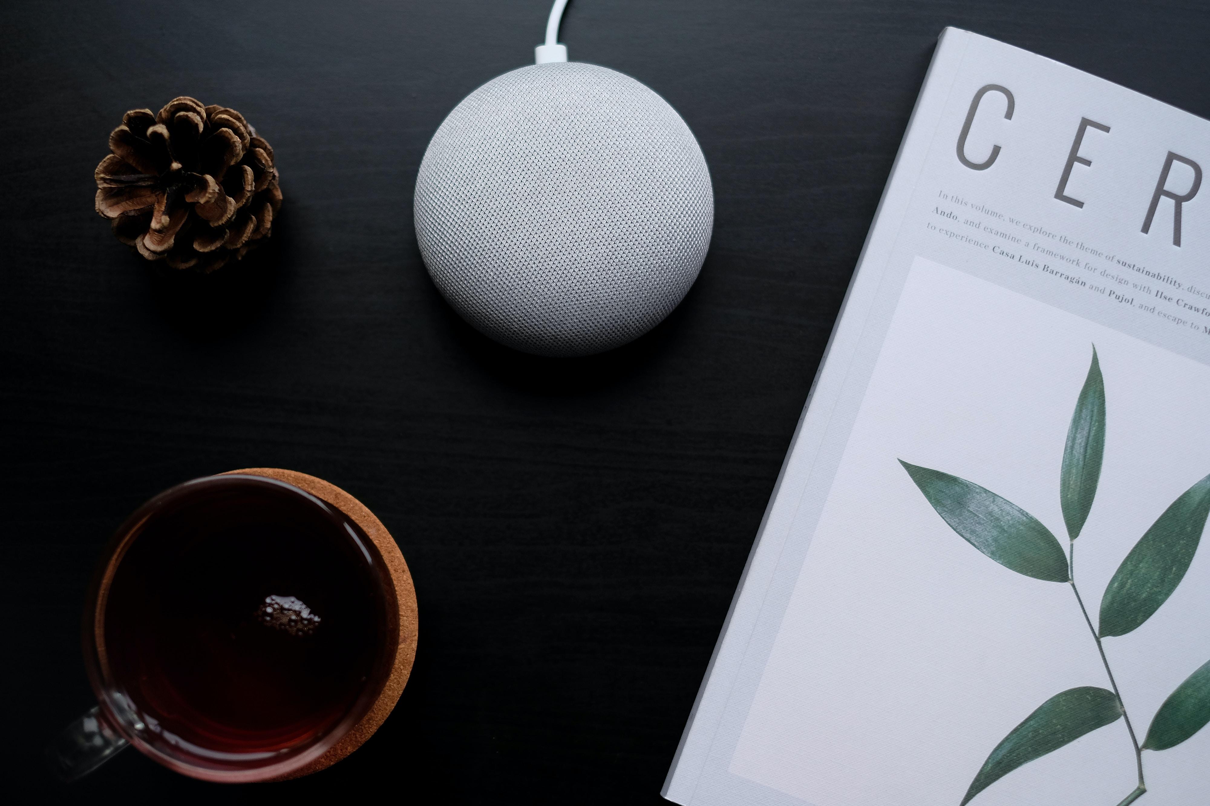 pinecone beside tea and portable speaker