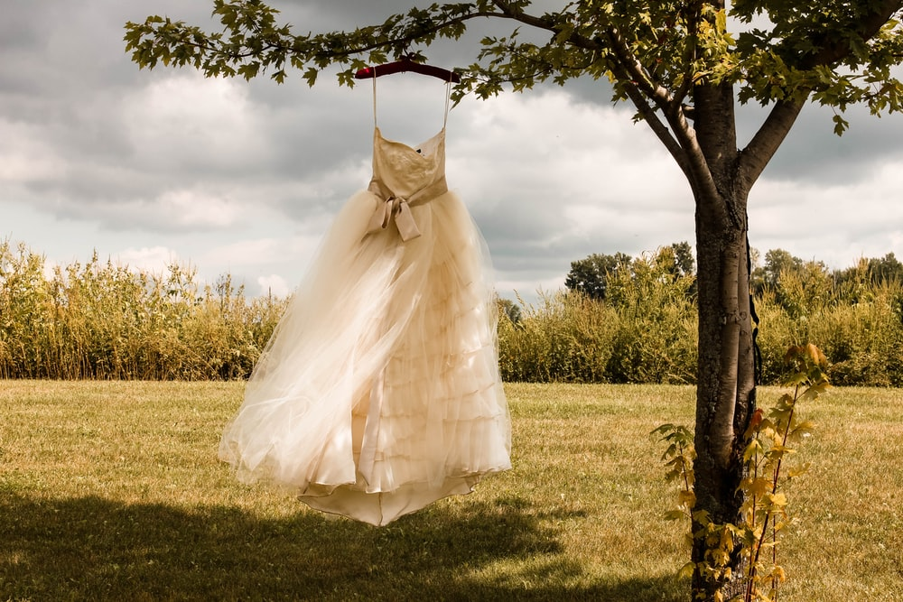white wedding dress hanging on green tree