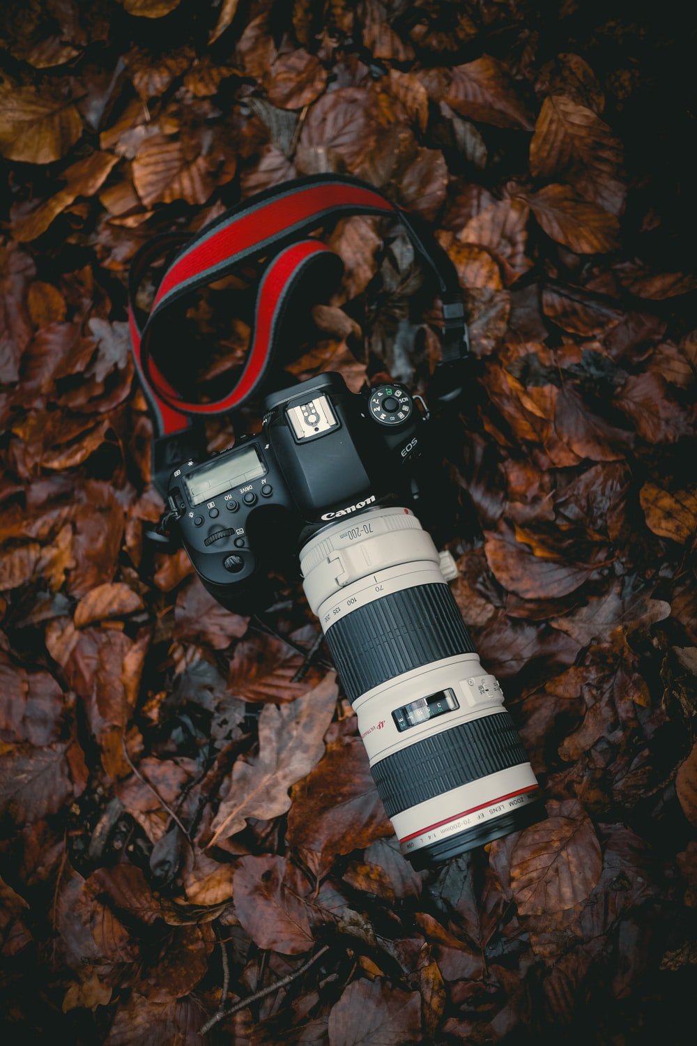 black and white DSLR camera close-up photography
