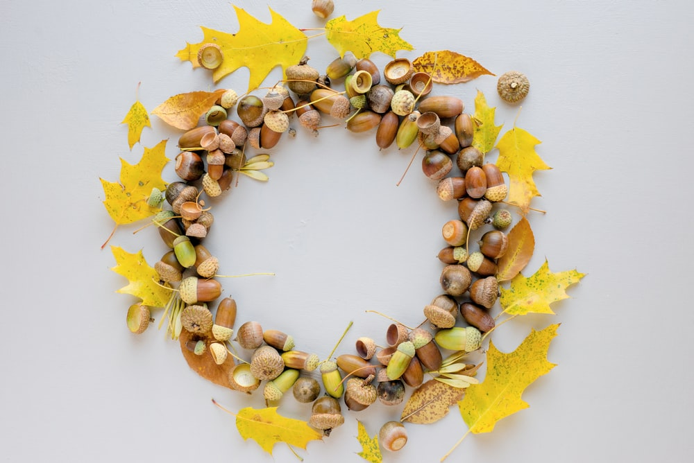 round nut wreath design