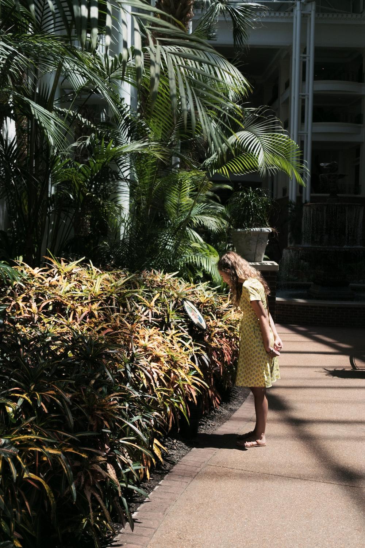 woman standing beside green plants near buildings