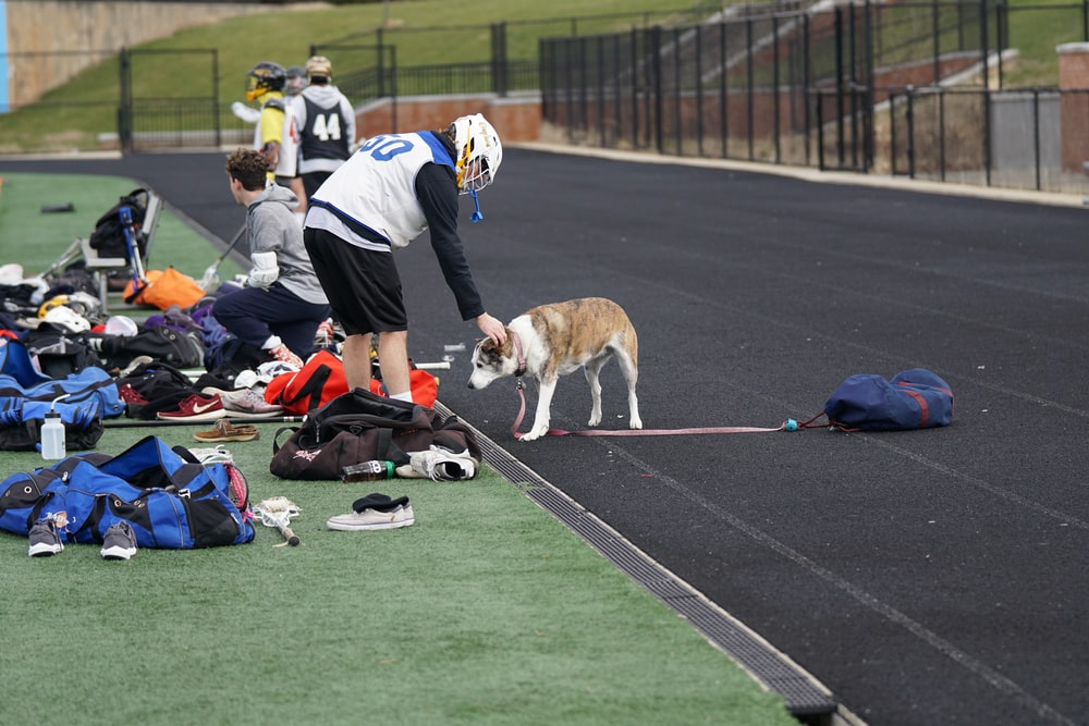 man patting dog while in sports field