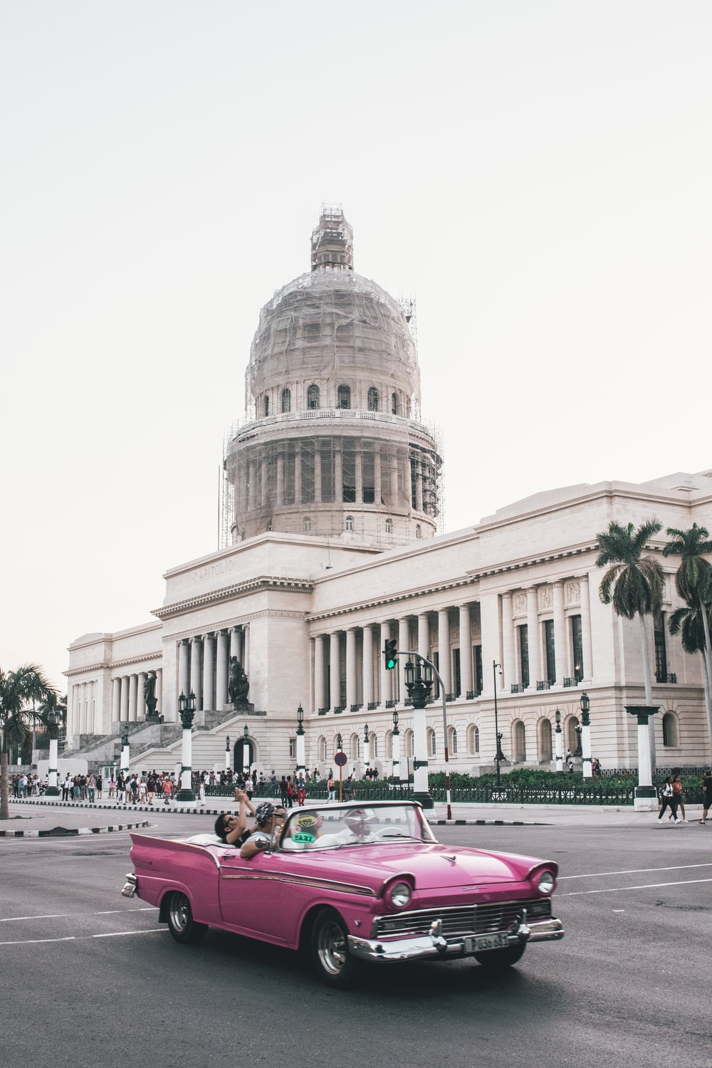 people riding on pink convertible coupe parked near white concrete building