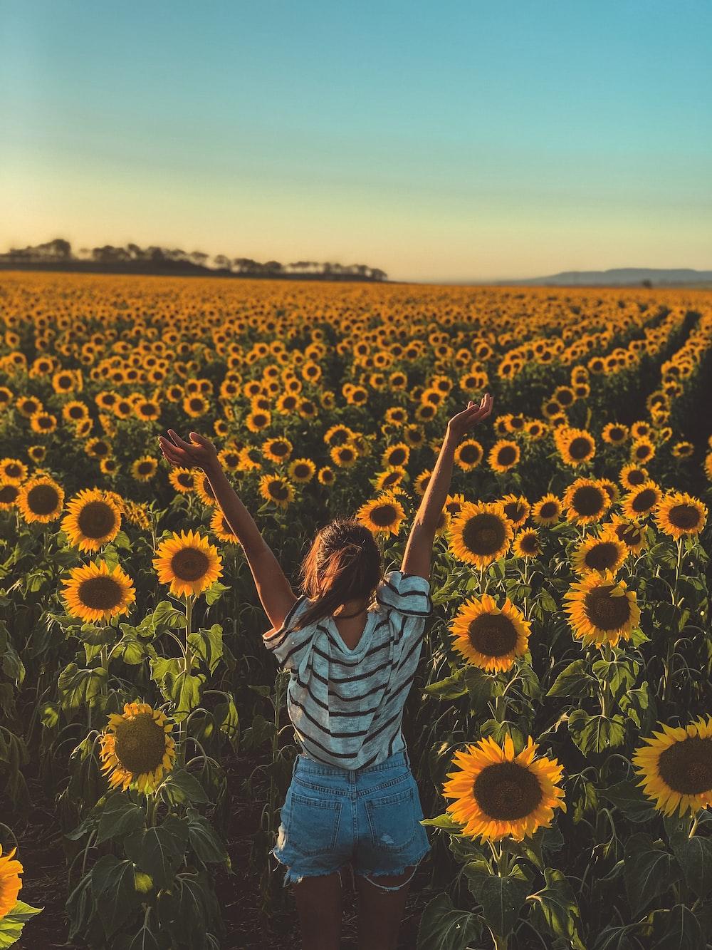 woman facing sunflower filed