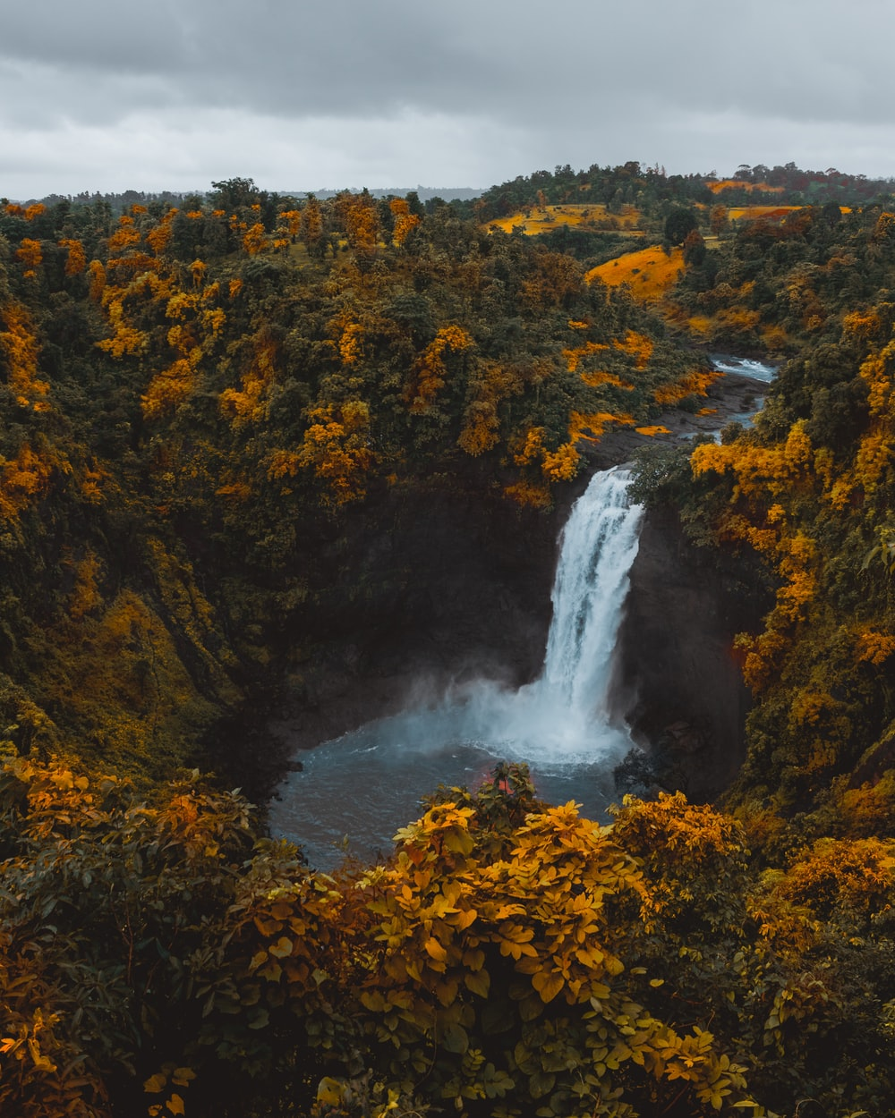 birds'-eye view photography of waterfall in forest