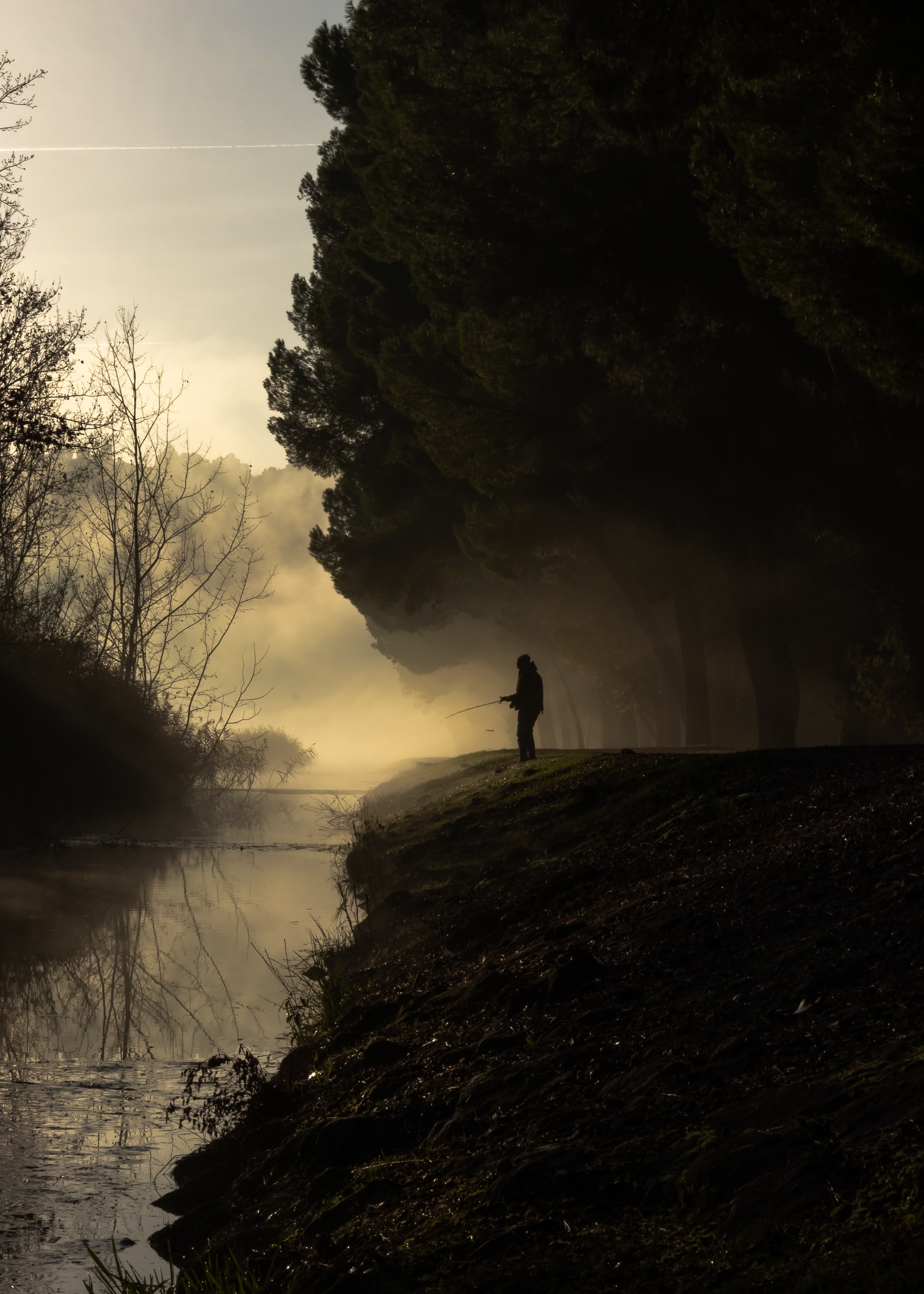 silhouette of man fishing near river