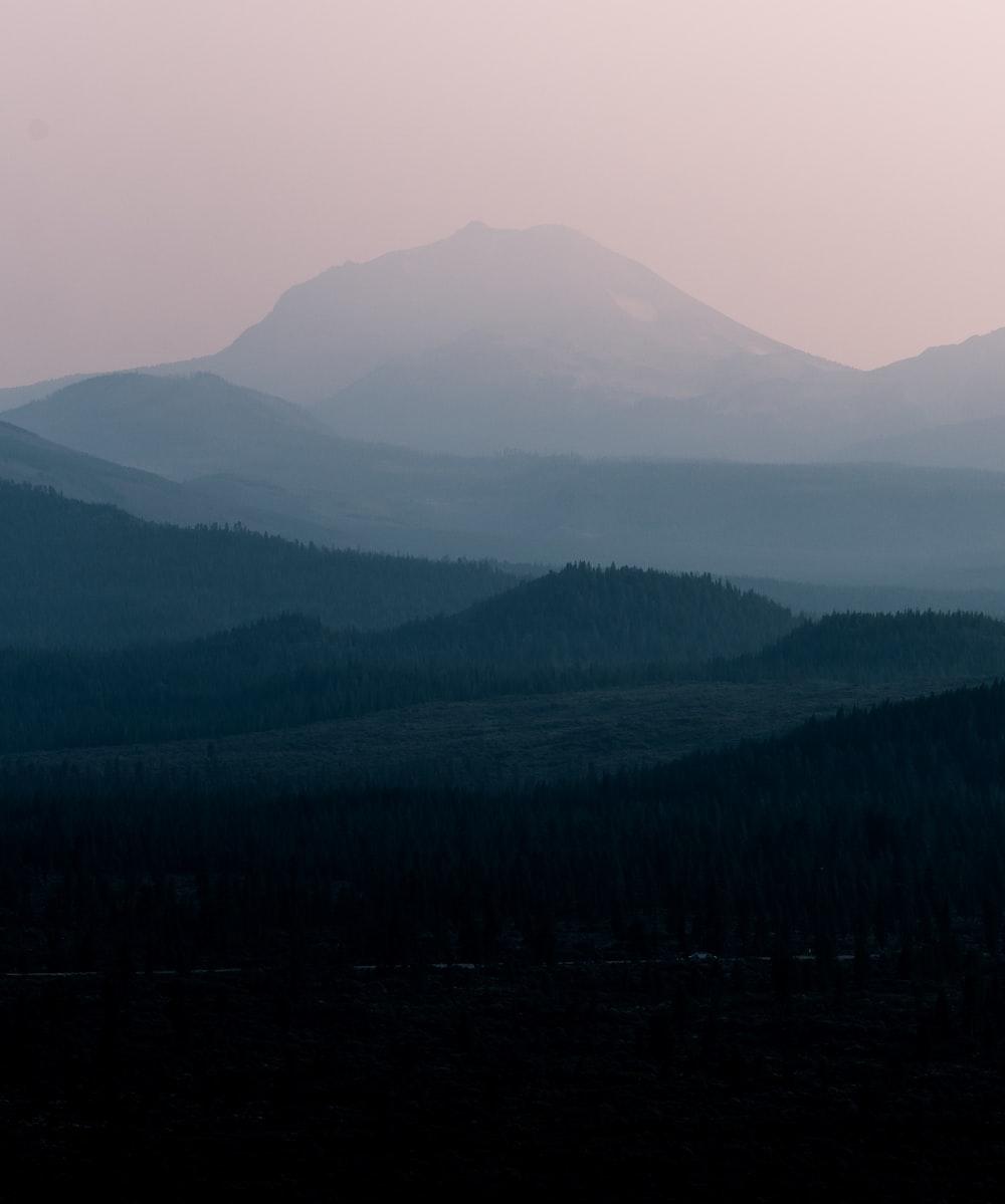 green woods across mountain