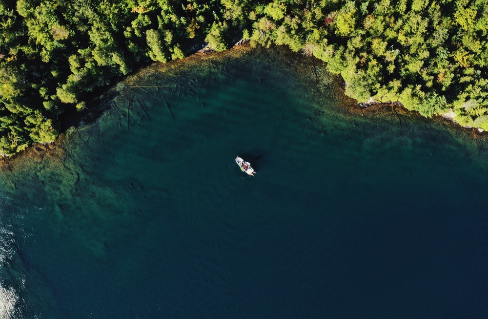 boat docked near shore with trees in aerial photography