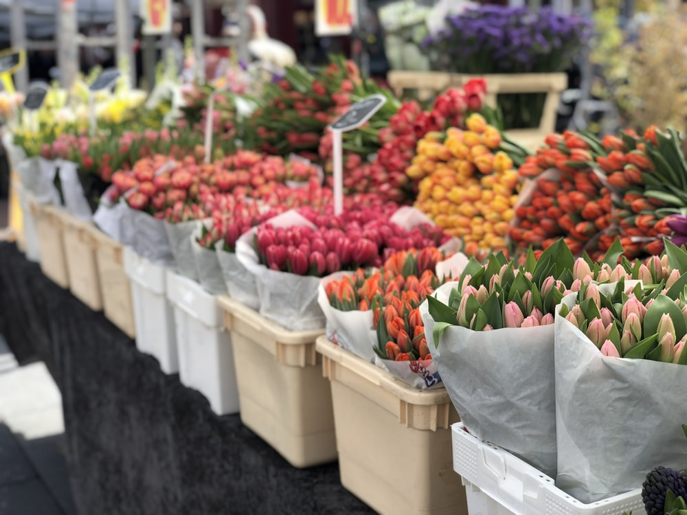 assorted flowers in container on display