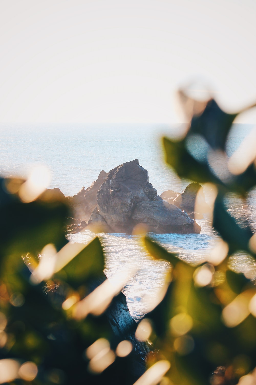 brown rocks on beach