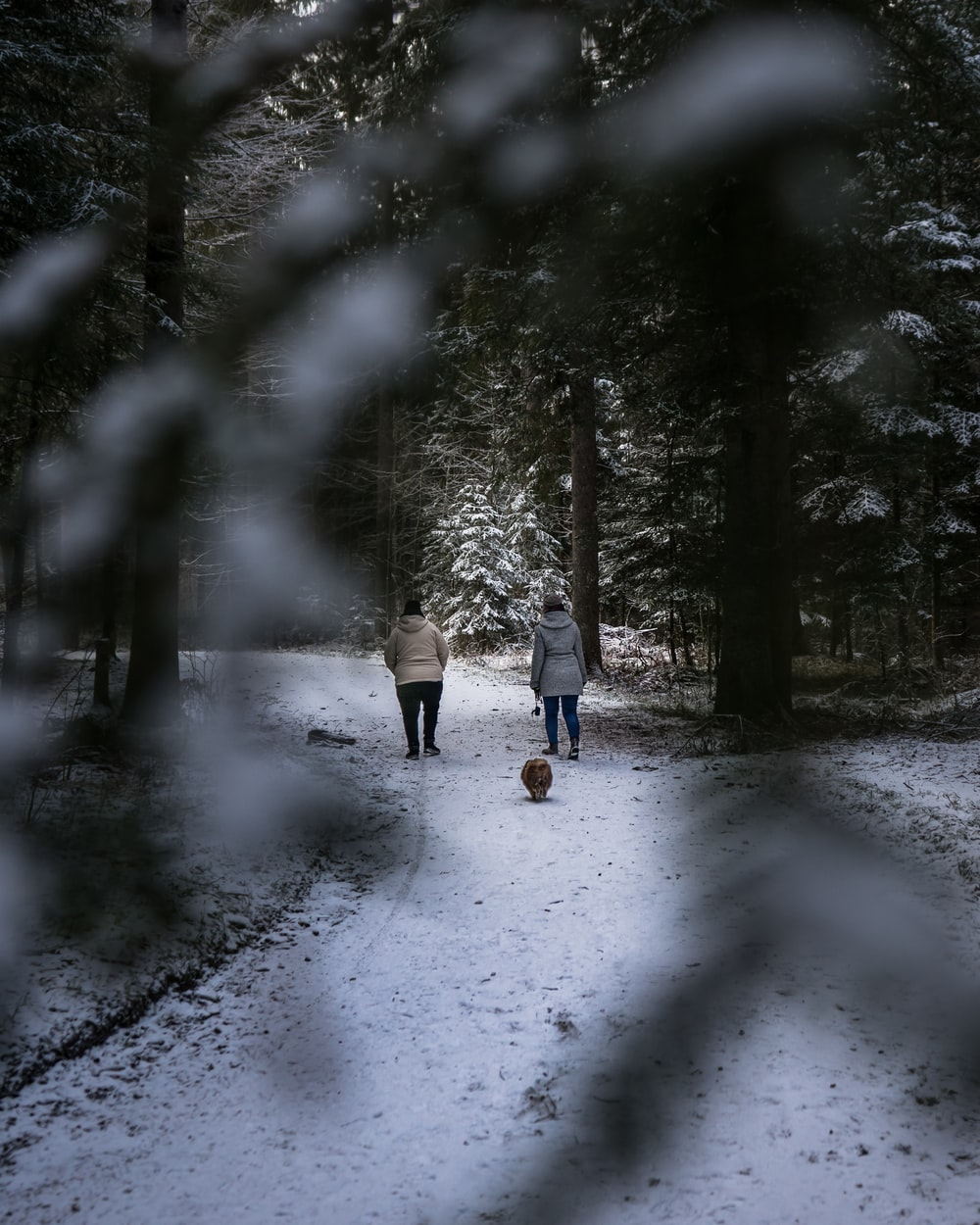 two persons walking on snow covered road during daytime