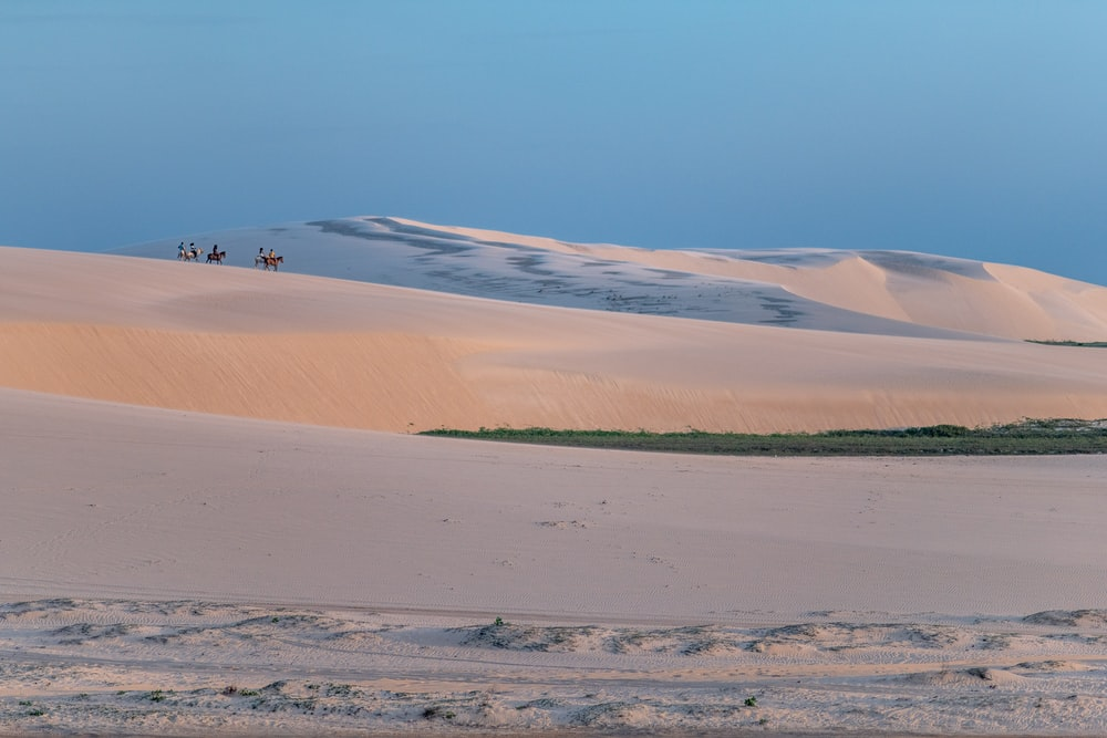 people and animals walking on sand dunes during golden hour