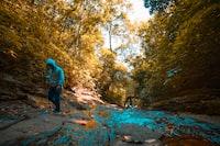 man in grey hoodie walking on creek with stick