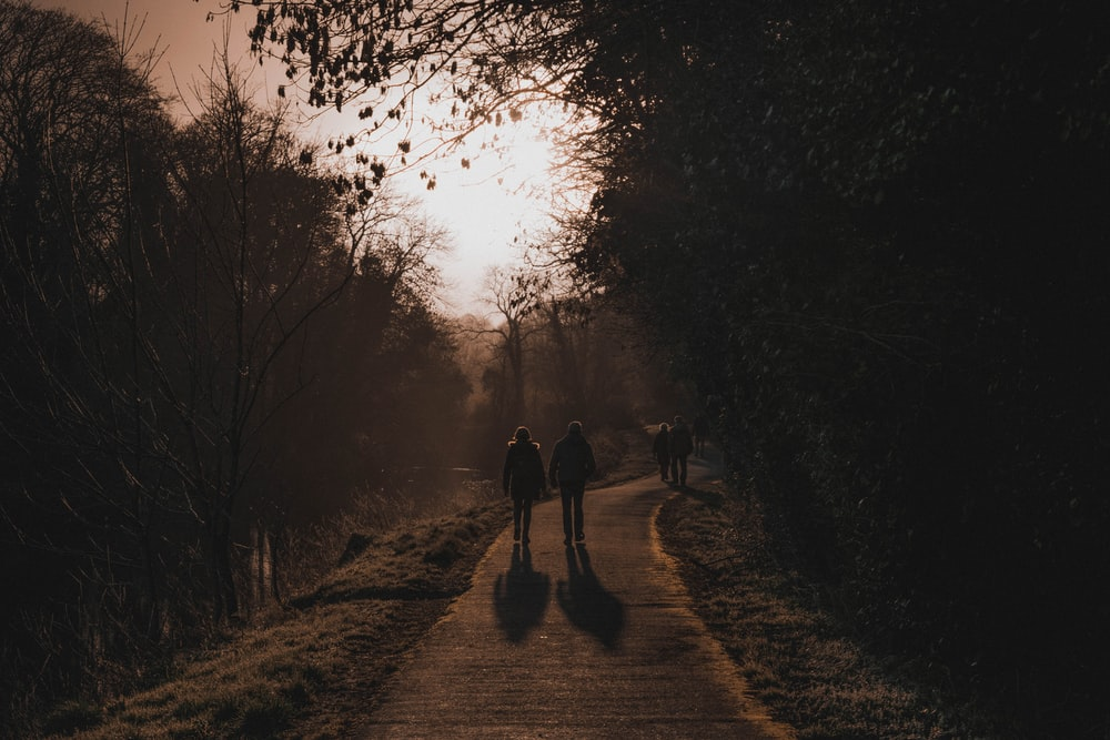 two people walking along pathway