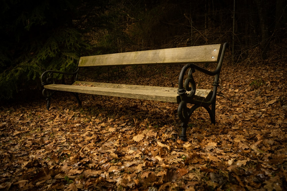 empty brown bench