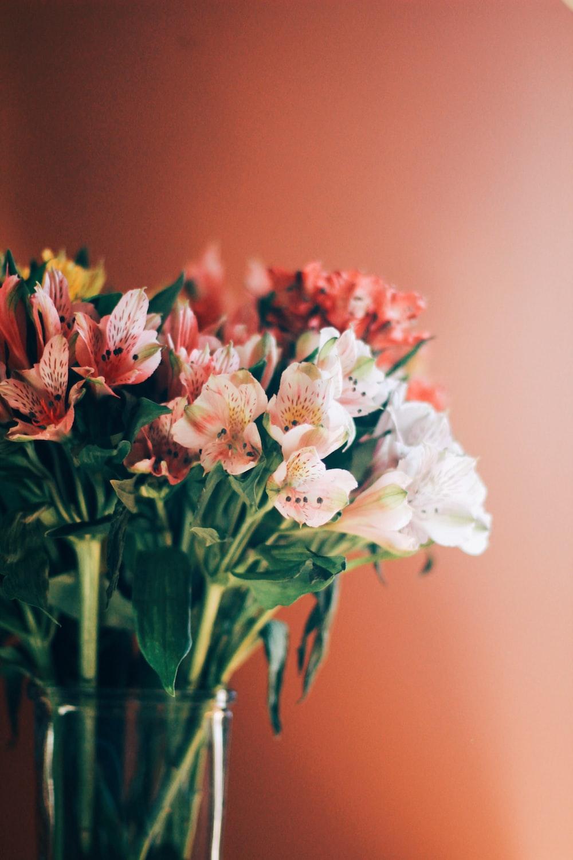 flower on glass vase