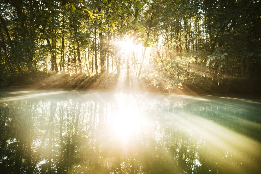 sunlight to body of water