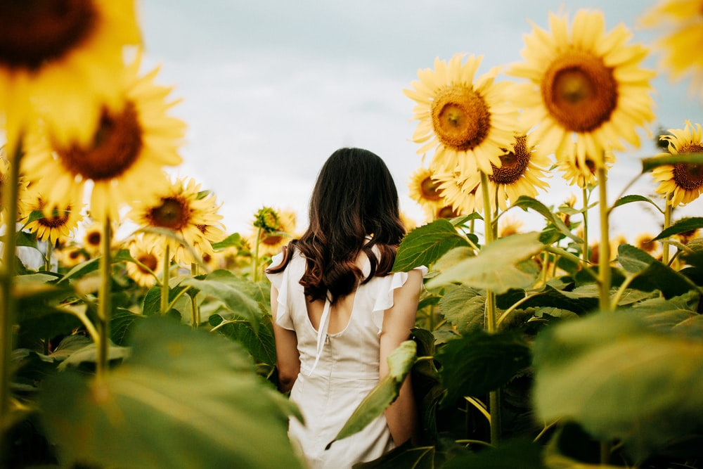 woman surrounded by yellow sunflowers