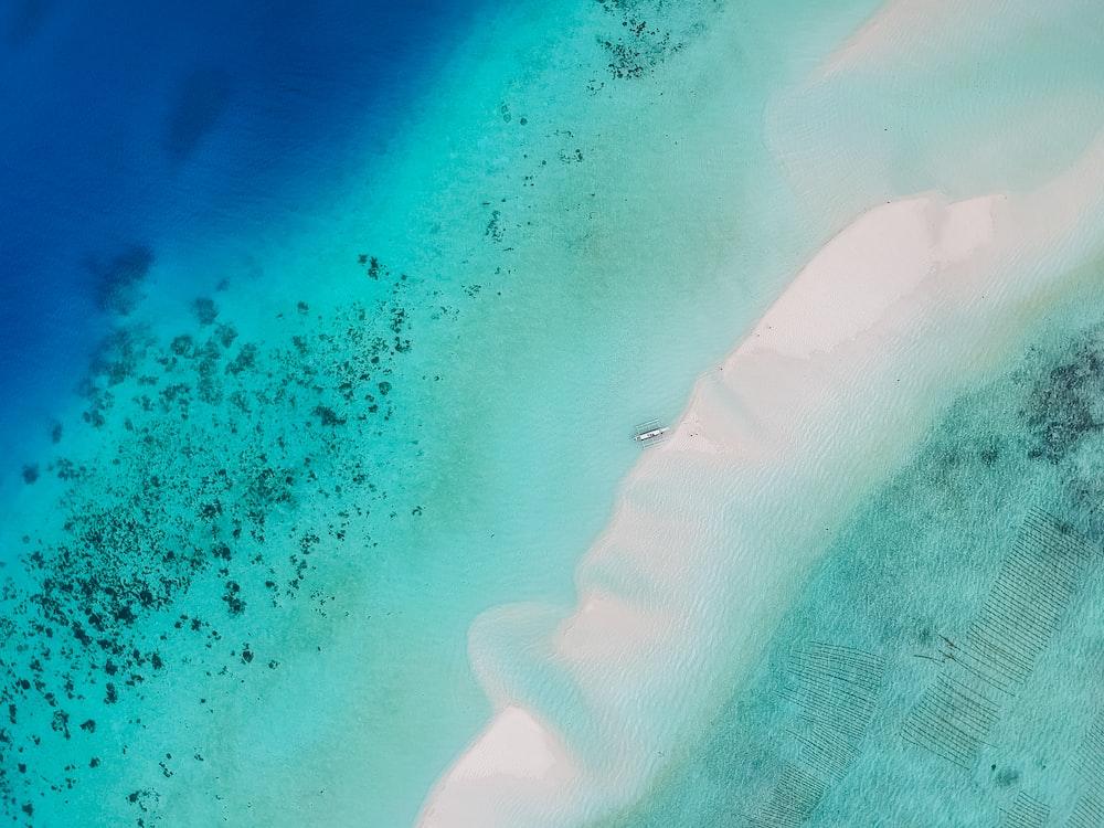 blue and teal sea photo