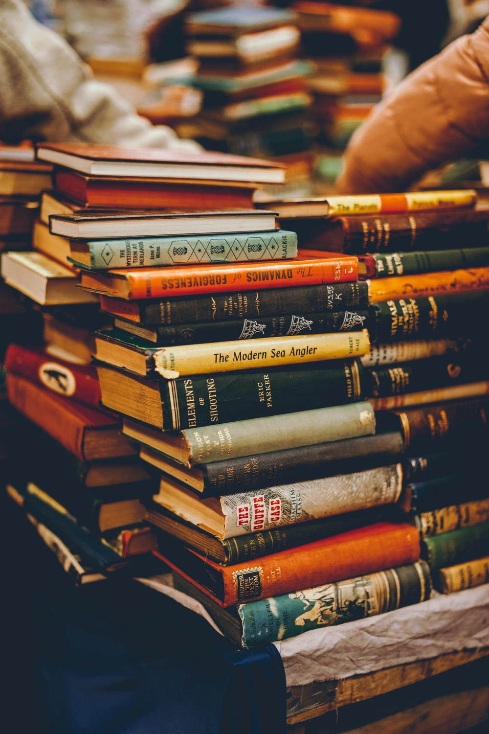assorted reading books