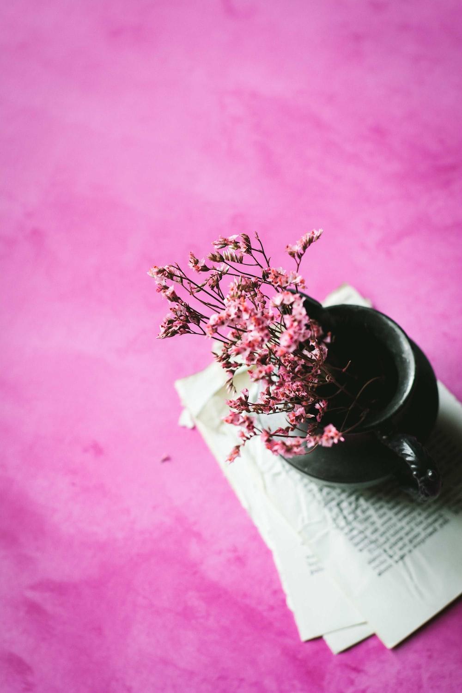 pink petaled flowers on teacup