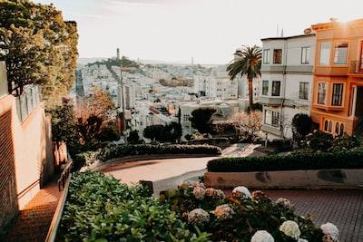 san francisco's downhill winding street san francisco zoom background