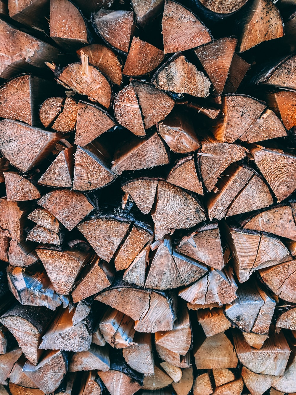 close-up photo of brown firewood