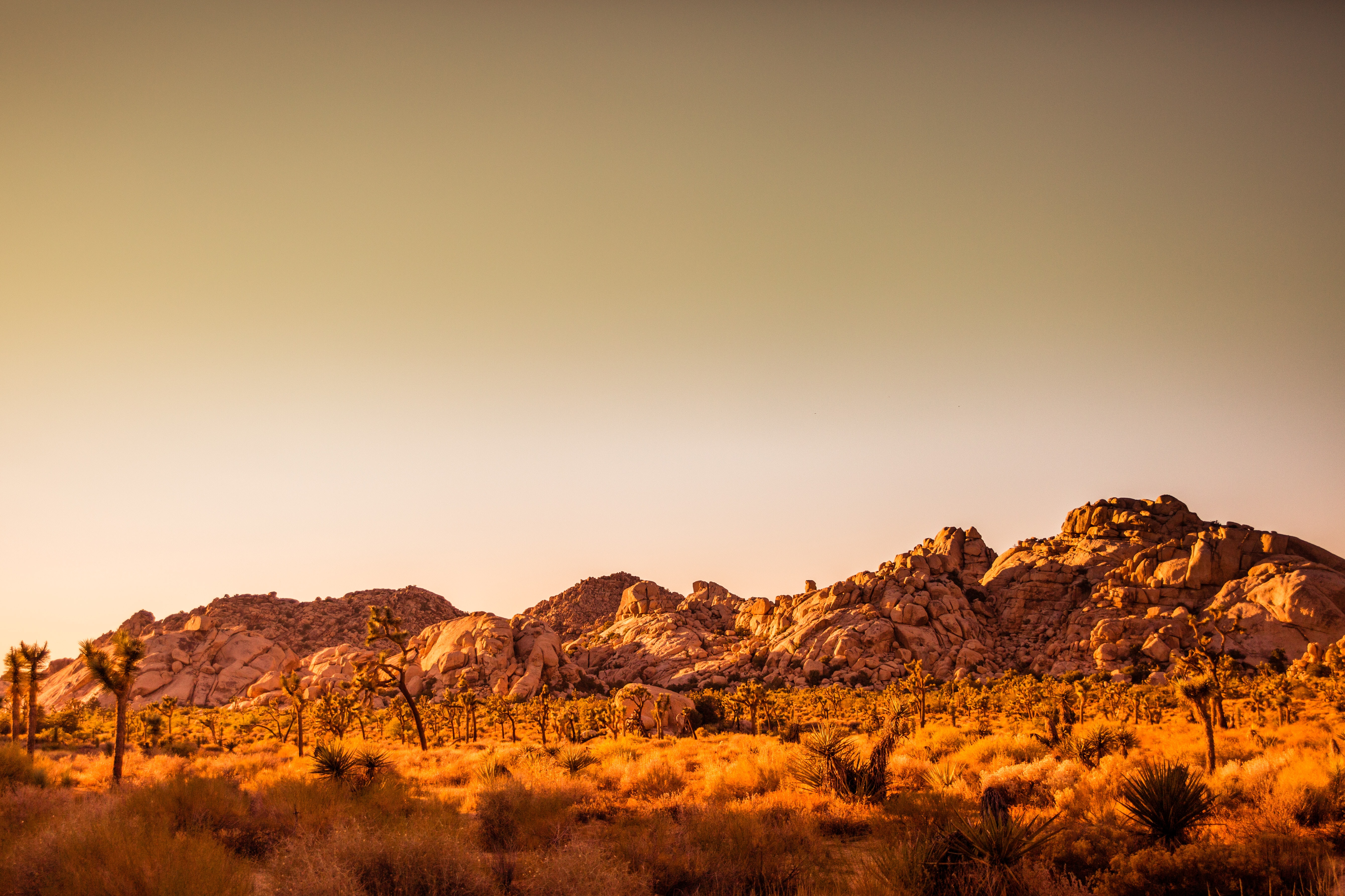 mountain at golden hour