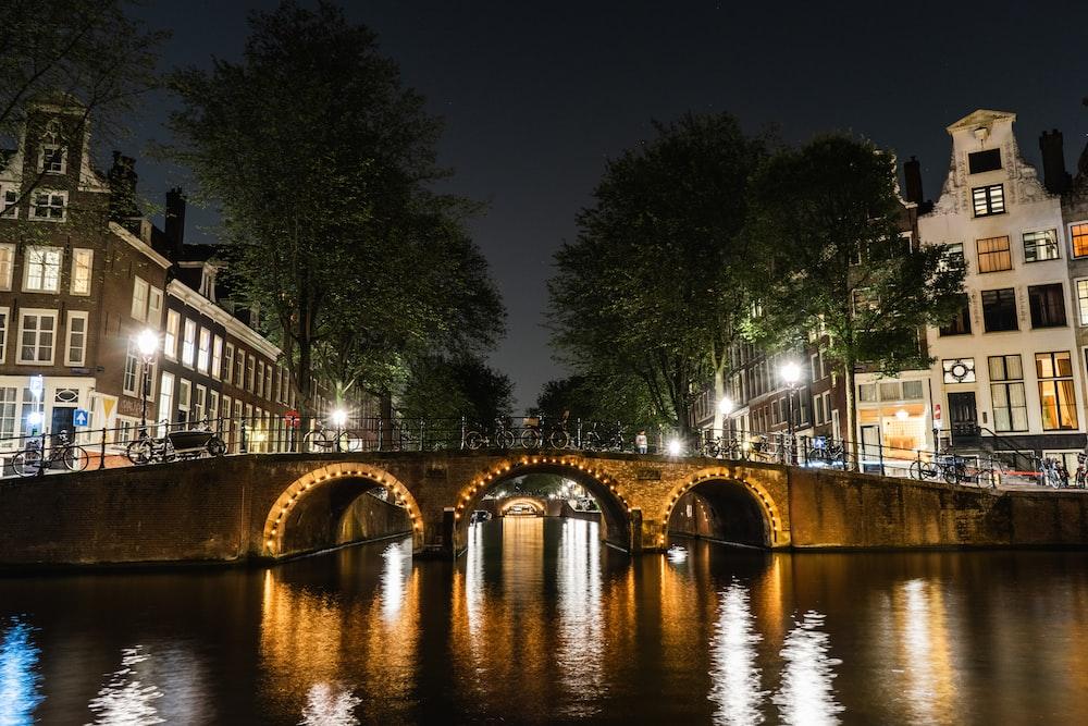brown bridge on body of water at nighttime