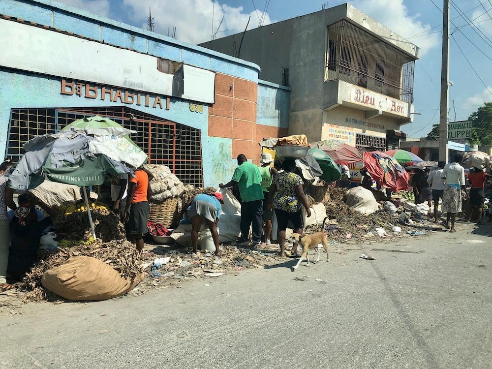 people on road beside building