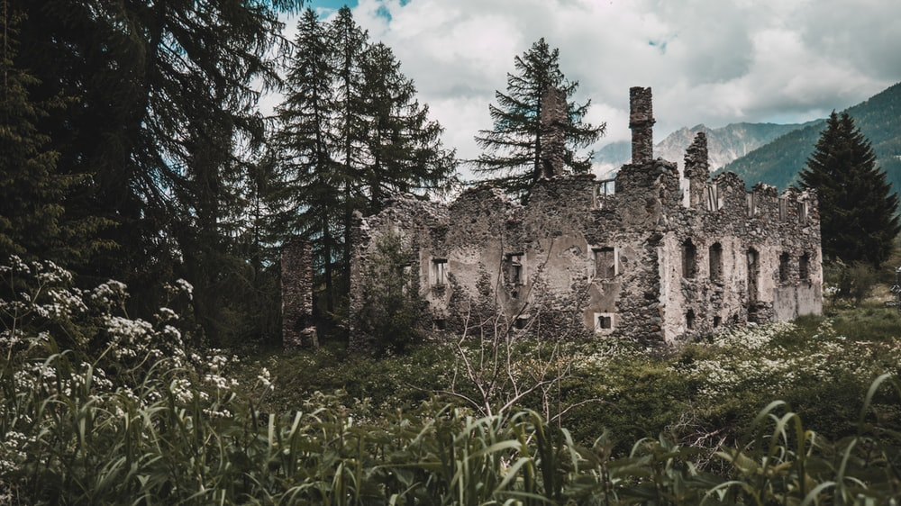 ruined concrete house beside trees and plants during daytime