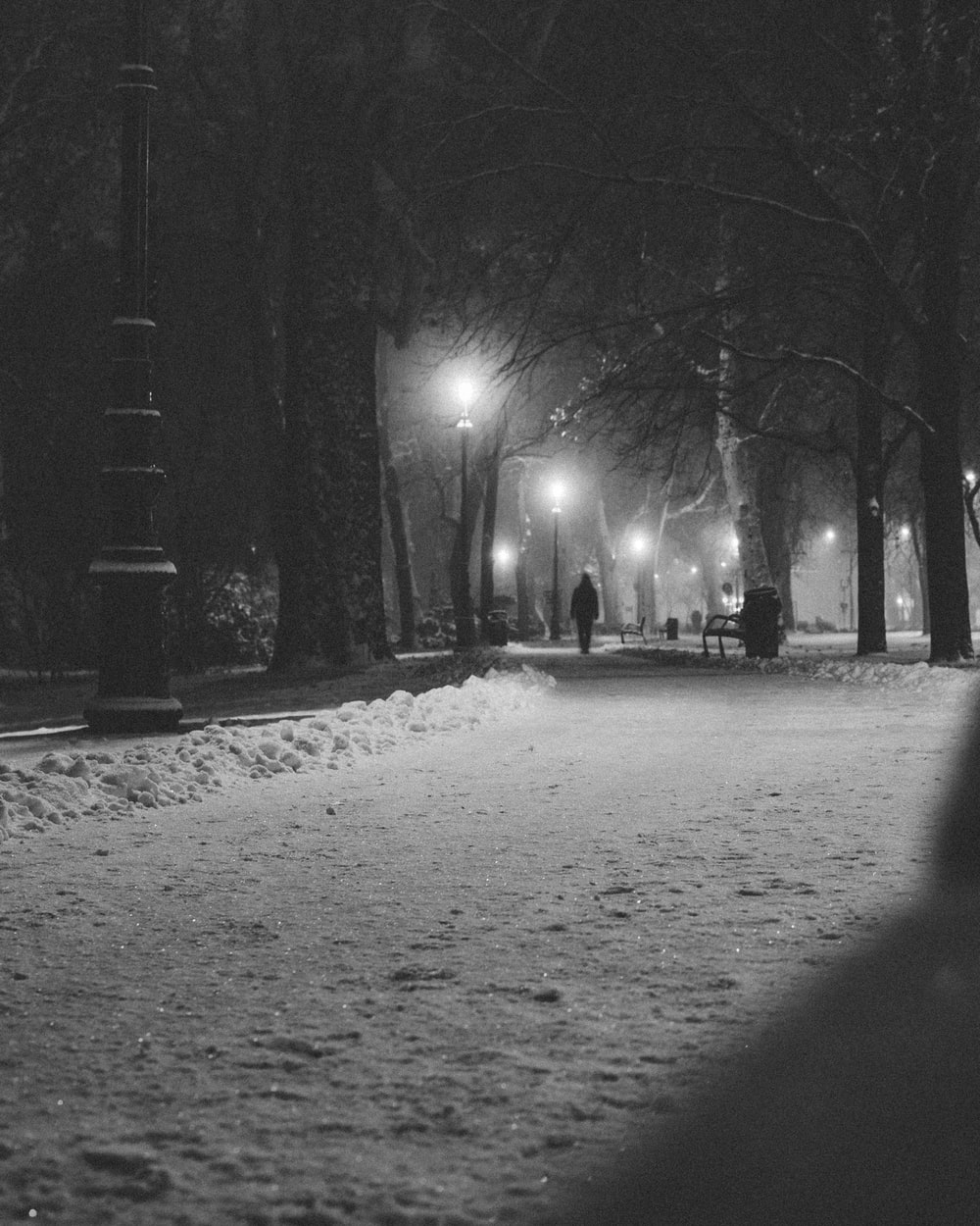 person walking on road beside trees during nighttime