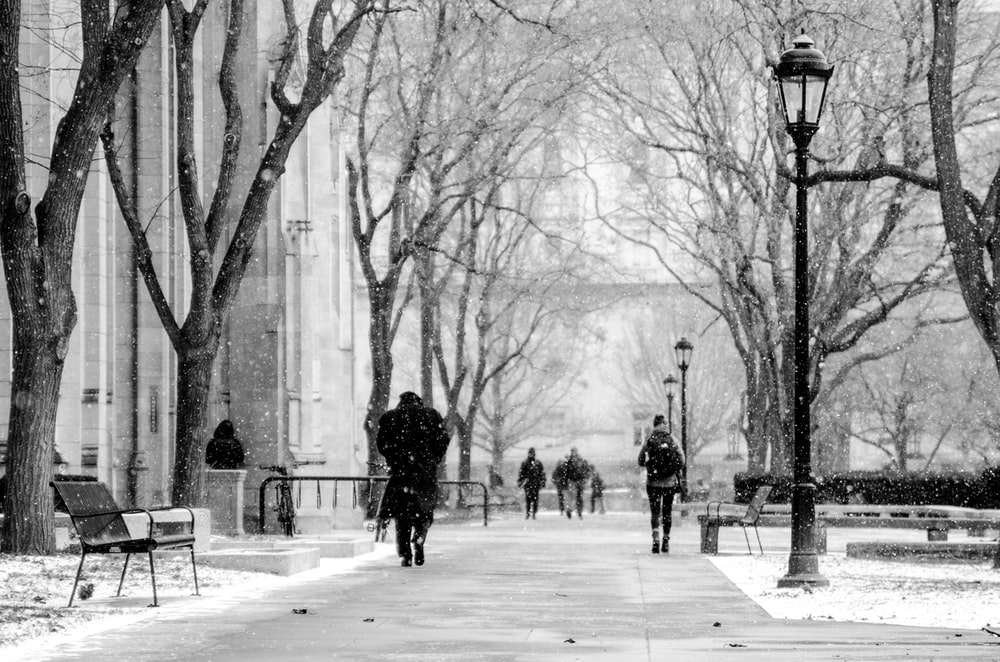 greyscale photo of people walking on park during winter