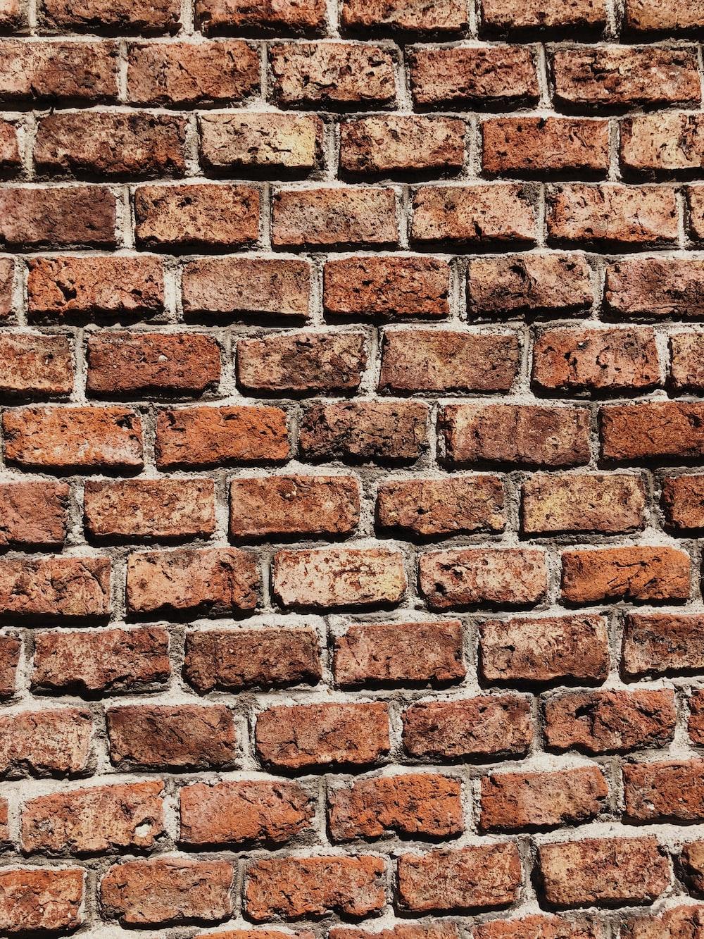 brown brick wall on daylight