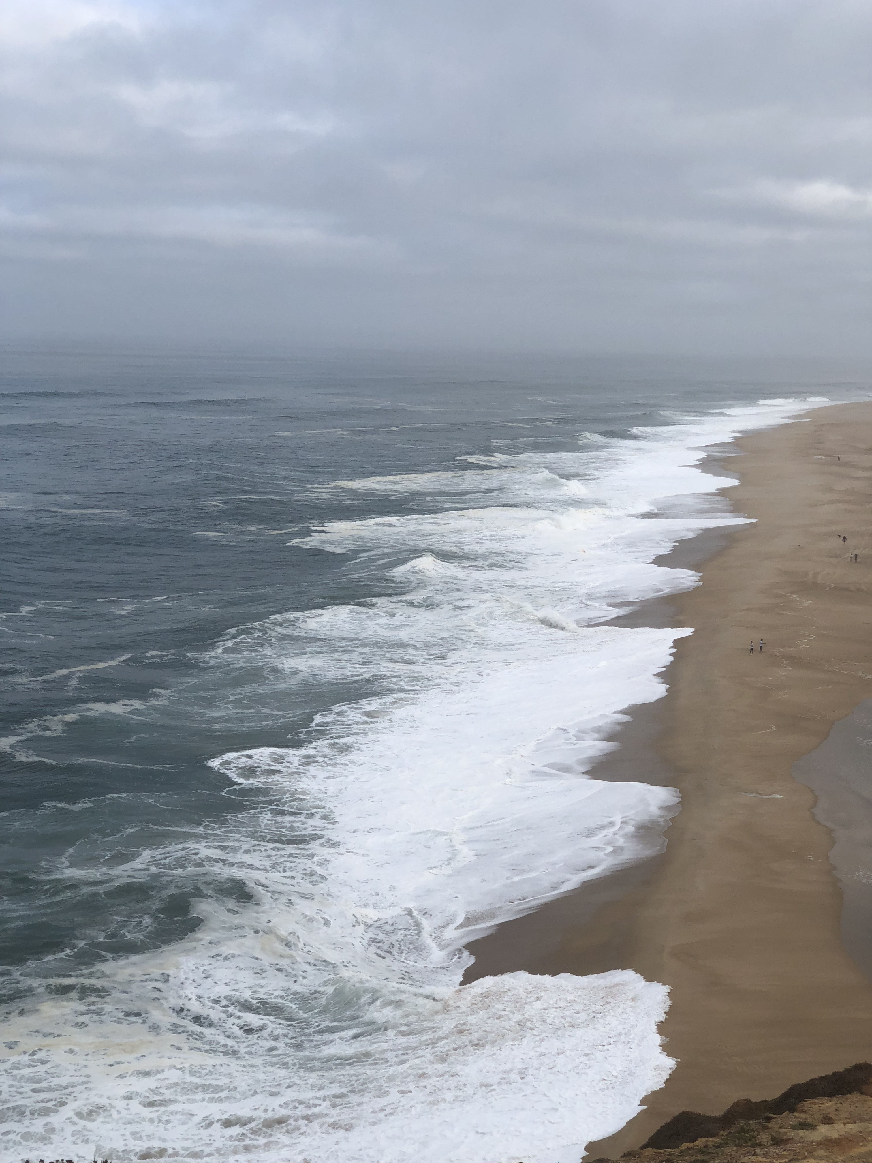 shore during daytime