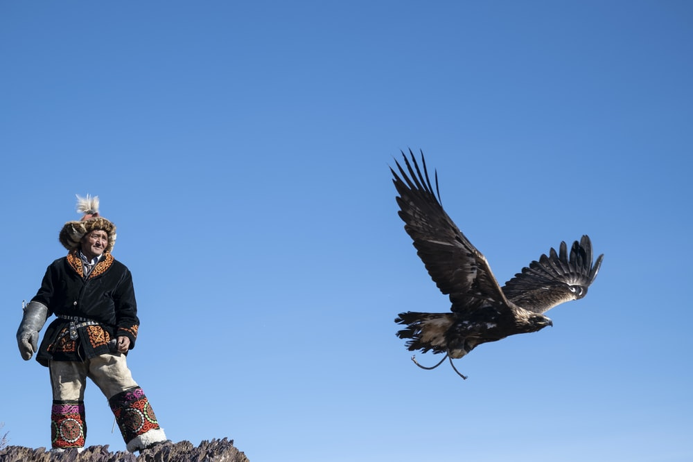 man standing near flying bird
