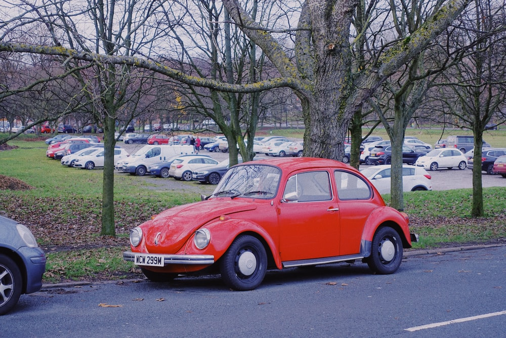 red Volkswagen Beetle coupe parked near tree