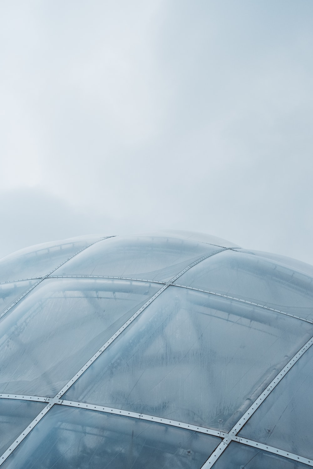 white metal framed glass dome